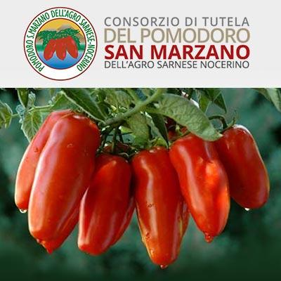 Pomodoro San Marzano DOP